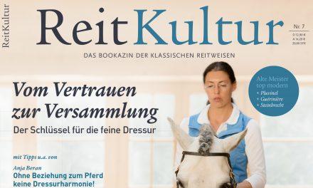 Alte Ausgabe, im Verlag noch lieferbar